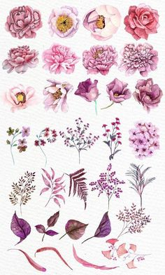 Pink flowers clipart WATERCOLOR CLIPART Floral clipart Pink watercolor Diy invites Greeting cards Wedding flowers Watercolor flowers You will receive 32 elements saved in PNG High resolution 300 dpi elements size aprox 7 All elements are hand pa - p Watercolor Clipart, Watercolor Flowers, Watercolor Paintings, Watercolor Wedding, Diy Painting, Watercolour, Wedding Drawing, Watercolor Sunset, Drawing Flowers