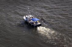 Use and abuse of the earth... dead zone in the Gulf of Mexico is the size of Connecticut