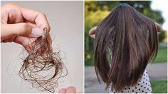 Pridajte si do svojho šampónu tieto dve v. Hair Health, Health Diet, Health Fitness, Beauty Detox, Health And Wellness Quotes, Natural Hair Styles, Long Hair Styles, Diy Hairstyles, Hair Hacks