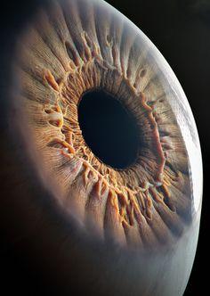 Realistic Eye by filimonov Human Anatomy Art, Body Anatomy, Dark Wallpaper, Galaxy Wallpaper, Foto Macro, Medical Wallpaper, Biology Art, Les Fables, Images Esthétiques
