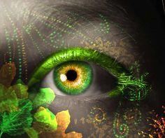 Photo of Eye for fans of Eyes 19801376 Beautiful Green Eyes, Stunning Eyes, Butterfly Eyes, Eye Images, Photos Of Eyes, Look Into My Eyes, Eye Art, Eye Candy, Lips