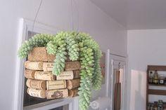 reciclar-corchos-de-vino-2