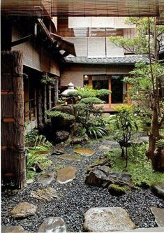asian garden A pine tree is one of most famous plants in Japanese garden, but it is necessary Small Japanese Garden, Japanese Garden Design, Japanese House, Japanese Gardens, Garden Modern, Japanese Style, Small Courtyard Gardens, Small Courtyards, Zen Gardens