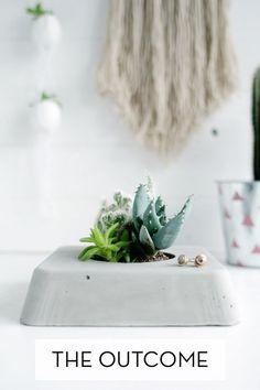 Make It: DIY Concrete Succulent Planter