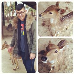 Petting zoos are fun