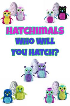 Hatchimals Are the Top Toy For Christmas This Year Who Will You Hatch?
