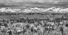Black and White Canadian Nature, Calgary, Touch, Mountains, Black And White, Landscape, Park, Silver, Travel