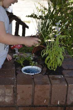 How I made a fairy garden...