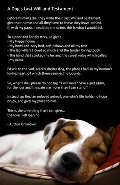 Dog's Last Will and Testament. Wish all pet owners would read this.