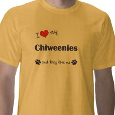 My Chiweenies