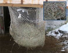 Horse slow feeder - a creative way of slowing down your horse's hay consumption.