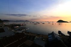 A hill view of Labuan Bajo bay on Flores Island, Indonesia. (Photo by Indra Febriansyah) #Indonesia