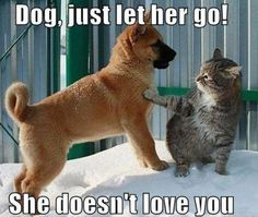 Just let her go!