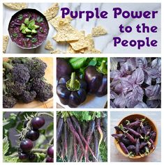 Purple+Power+to+the+People+Heirloom+OP+Vegetable+Seed+Collection+-+6+Varieties