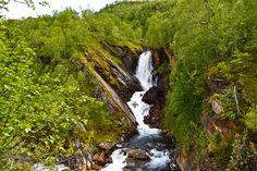 Foss i en grønn skog i Valnesfjord     http://www.tursiden.no/foss-i-en-gronn-skog-i-valnesfjord/