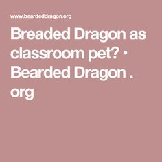 Breaded Dragon as classroom pet? • Bearded Dragon . org