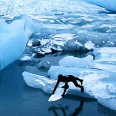 Glacier surfing in Alaska.
