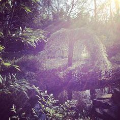 Hello #sunshine ☀️ in #frankfurt 😊 #magicmoments #lovenature #lebejetzt #indiesemmoment #lovemylive #present #carpediem