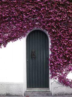 Puerta con forma de arco en su parte posterior, que tiene a su alrededor flores en color purpura
