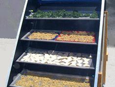 Build a Solar-Powered Food Dehydrator—Easy, Detailed Plans diy food – Dinner Food Solar Oven, Solar Heater, Permaculture Design, Dehydrated Food, Dehydrator Recipes, Renewable Energy, Solar Energy, Diy Solar, Off The Grid