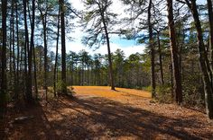 This 7-acre tract has it all-well, septic, and electricity available! Ready for your camper, RV, or to build your dream home. Nice wide driveway going to about acre cleared area that would make a wonderful building or camping site. There is a well constructed storage building at the edge of this cleared area. There are numerous trails for walking or 4-wheeling. Build Your Dream Home, Built In Storage, Campsite, Acre, Dreaming Of You, Real Estate, Spring, Camping, Real Estates