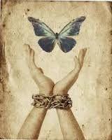 Eliminare il dolore manipolando le immagini | Rolandociofis' Blog Injustices In The World, Freedom Art, Susa, Ebook Cover, 1 Peter, Cover Photos, Art Gallery, Pictures, John 8