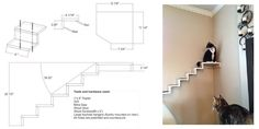 Cat staircase template