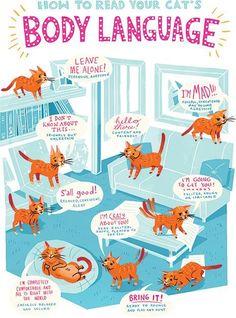cat language - Buscar con Google