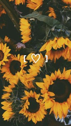 Find images and videos about flowers, inspiration and wallpaper on We Heart It - the app to get lost in what you love. Phone Backgrounds, Wallpaper Backgrounds, Iphone Wallpaper, Tumblr Wallpaper, Sunflower Wallpaper, Most Beautiful Flowers, Disney Instagram, Landscape Illustration, Illustration Art