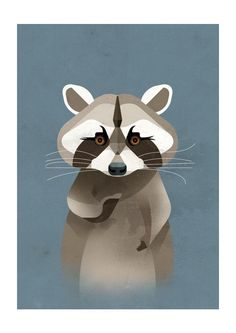 Raccoon by Dieter Braun - East End Prints - 19,95 GBP