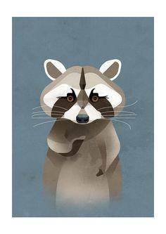 Raccoon by Dieter Braun - East End Prints - 19,95 GBP