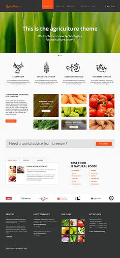 Template 47427 - Agriculture Company Responsive Website Template #wordpress #themes