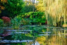 The Japanese Bridge in Monet's garden at Giverny, France, attracts tourists from around the world who admire the Impressionist painter's work