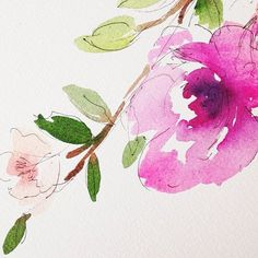 Pretty washes and pen combo, perhaps an idea for a floral print..#watercolorandpen #flora #watercolorsketch