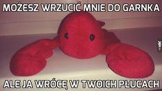 Best Memes, Prepping, Dinosaur Stuffed Animal, I Am Awesome, Jokes, Lol, Humor, Random, Disney