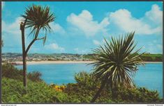 Porthcressa Bay, St Mary's, Scilly, c.1970 - Gibson Postcard