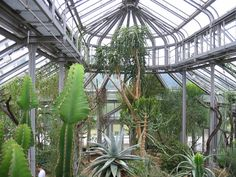 greenhouse layout - Google Search
