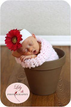 Newborn Baby T Session {@ Lily Photography by Elizabeth Chandler} #NewbornBabyPhotography #StudioPhotography