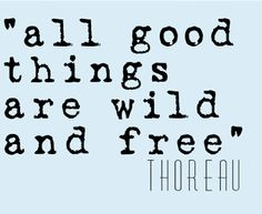 Life Quote Henry David Thoreau