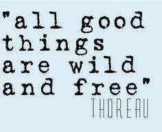 Life Quote Henry David Thoreau