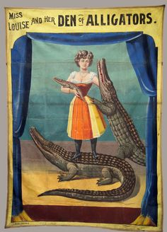 Miss Louise and Her Den of Alligators Sideshow Banner Vintage Circus Posters, Vintage Carnival, Creepy Carnival, Carnival Costumes, Steampunk Circus, Circo Vintage, Human Oddities, Circus Performers, Circus Art