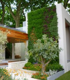 Green Vertical Walls at the Chelsea Flower Show : TreeHugger
