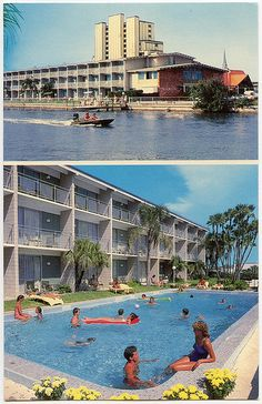 stayed there on vacation when I was young. Clearwater Florida, Sarasota Florida, Old Florida, Florida Beaches, Island Inn, Island Resort, Century Hotel, Mid Century, Howard Johnson Hotel
