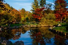 Arboretum Volcji Potok, Slovenia