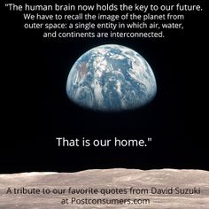 Favorite David Suzuki Quotes: The Human Brain Earth our common home laudato si Planet Love, Save The Planet, Need Quotes, Life Quotes, Earth Day Quotes, David Suzuki, Earth Day Crafts, Reduce Reuse, Reuse Recycle