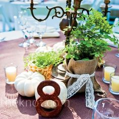 "Green Reception Centerpieces ""Living arrangements"" of potted ferns and moss adorned the reception tables. Reception Table, Wedding Reception Decorations, Wedding Ideas, Free Wedding, Wedding Pictures, Wedding Table, Wedding Planning, Burlap Centerpieces, Wedding Centerpieces"