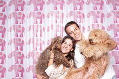 Photobooth de los Australian Labradoodle del Criadero Frank on the Road con La Caravana Photobooth #australianlabradoodle #perros #bogotá #photobooth #dogfriendly Labradoodle, Beauty, Factory Farming, Dogs, Beleza, Labrador