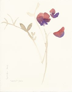Stacey Vetter, Sweet Pea, watercolor on paper