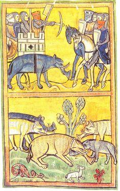 marinni | Старинные изображения животных.A Book of Four-Footed Beasts-1658-64