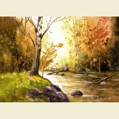 sycamore tree by water (watercolor)